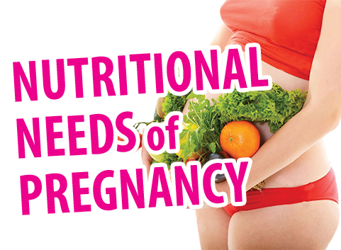 Nutritional Needs Of Pregnancy