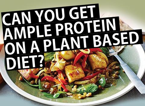 Ample Protein Diet