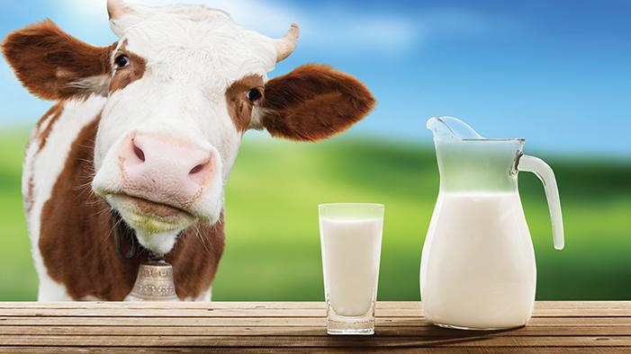 1587455293cow-s-milk-1.jpg