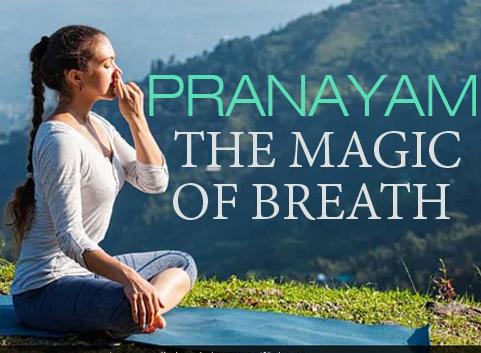 Pranayam The Magic Of Breath